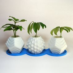 These stimulating geometric planters are 99% effective at reducing boringness: a funky a set of (3) small modern planters exquisitely made with 3D