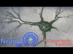 Neurônios Espelho - Mirror Neurons (Legendado) - YouTube