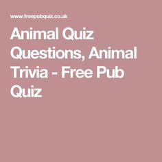 General Knowledge and Quiz Questions Answers