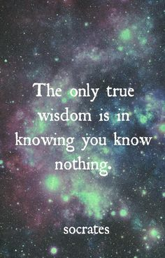 """""""The only true wisdom is in knowing you know nothing."""" - Socrates"""
