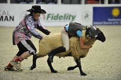Mutton Busting, a hilarious rodeo-style competition for children, was featured for the first time at the 2011 Washington International Horse Show