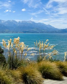 Strolling along an epic coastline. Itinerary Planner, Travel Planner, Nz South Island, New Zealand Travel, Trip Planning, Wonders Of The World, Scenery, Travel Route Planner, Landscape