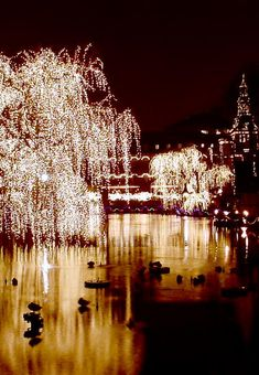 Tivoli Gardens, Copenhagen, Denmark... Would love to visit here but not necessarily on my bucket list! lol