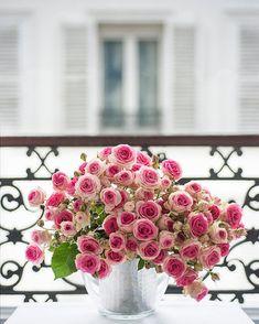 Decora tu balcón con rosas
