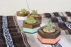 Set of 3 Wood Planters  Small Honeycomb by RoamingRootsWoodwork