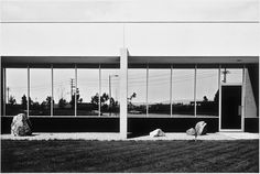 Icon of New Topography movement Lewis Baltz dies at 69