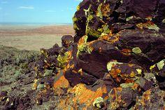 https://flic.kr/p/9HqX3H   Petrified Forest National Wilderness Area, Pilot Rock, Bidahochi Formation   Credit: NPS Photo