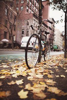 """like my old college bike """"bedlam"""""""