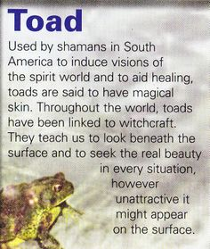 Toad spirit guide - Pinned by The Mystic's Emporium on Etsy