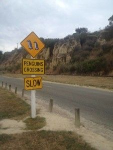 Awesome penguins crossing sign