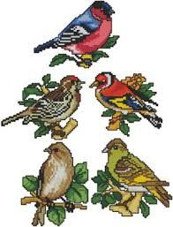 Image result for cross stitch birds