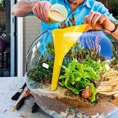 to make a beachy terrarium Use a funnel when adding sand to a beachy terrarium!Use a funnel when adding sand to a beachy terrarium!