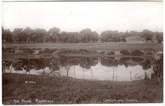 Early REDBOURN The Moor Hertford Photo Postcard