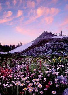 Mt. Rainier National Park, WASHINGTON STATE  FABULOUS