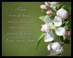 1 Corinzi 13:7-8