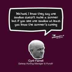 Michael, I know they say one swallow doesn't make a summer but if you see one swallow at least you know the summer's coming. Swallow, I Know, Ireland, My Life, At Least, Sport, Sayings, Funny, Quotes