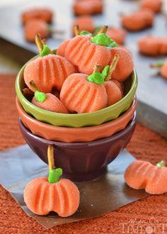 Save this easy, no-bake dessert recipe to make Pumpkin Patties for Halloween. Baked Pumpkin, Pumpkin Recipes, Fall Recipes, Holiday Recipes, Pumpkin Cookies, Candy Recipes, Fete Halloween, Halloween Goodies, Easy Halloween Desserts