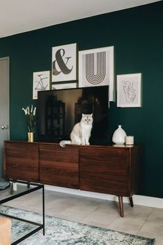 Green Accent Walls, Dark Green Walls, Accent Walls In Living Room, Living Room Green, Bedroom Green, Green Rooms, Home Living Room, Living Room Decor, Bedroom Decor