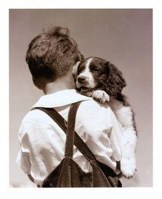 #Boy and his #English #Springer #Spaniel #Dog