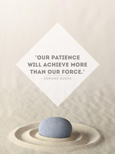 """""""Our patiencewill achieve morethan our force.""""- Edmund Burke"""