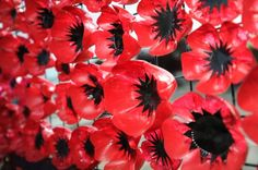 Gallery: Ipswich primary school creates its own Tower of London-inspired poppy display.out of plastic bottles Art Plastic, Plastic Bottle Flowers, Plastic Bottle Crafts, Poppy Craft For Kids, Remembrance Day Art, Poppy Wreath, Plastic Drink Bottles, Ww1 Art, Recycled Art Projects