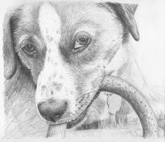 Pencil Drawing Made Easy | Learn pencil drawing the easy way