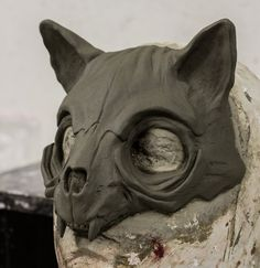 Cat Skull Mask sculpture by FraGatsu on DeviantArt Cat Skull, Skull Mask, Animal Masks, Animal Skulls, Deer Skulls, Ceramic Mask, Cat Mask, Cosplay Tutorial, Masks Art