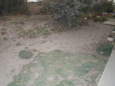 Mi patio, ahora con cenizas del Calbuco.