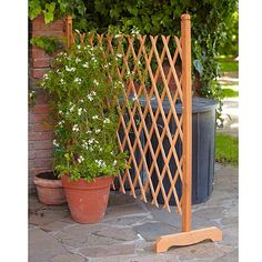 1000 images about trellis on pinterest garden trellis for Free standing garden trellis designs