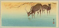 Ohara Koson  Deer in Shallow Water Date:Ca. 1936.