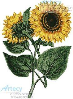 Sunflowers cross stitch pattern.