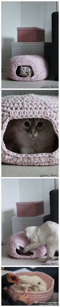 alice brans posted for the kitty cat :) I love this! to their -crochet ideas and tips- postboard via the Juxtapost bookmarklet. Chat Crochet, Crochet Home, Crochet Crafts, Yarn Crafts, Crochet Projects, Sewing Projects, Diy Crafts, Diy Stuffed Animals, Crochet Animals
