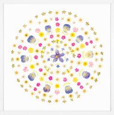 Power Flower 2 | Natural Curiosities