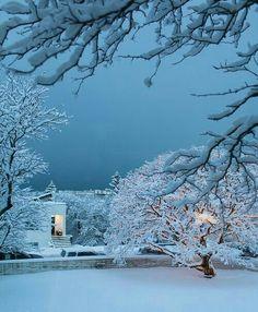Beautiful winter...