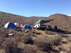 En medio de la sierra, cerca y lejos de los venados, serpientes, liebres, coyotes, arañas, pumas, etc,etc,...... (2015)
