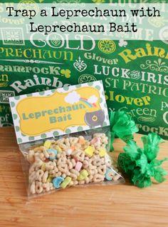 Leprechaun Bait - Leprechaun Trap - St. Patrick's Day