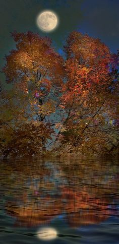 Autumn moon landscape by Peter Holme iii