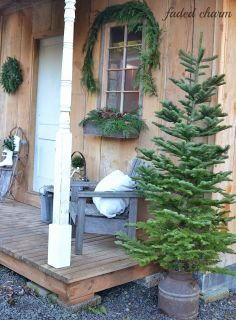 Christmas trees, Trees and What's the on Pinterest