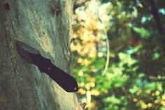 Throwing Knife in the Summer Forest Woodland Trees by NightNight, $20.00