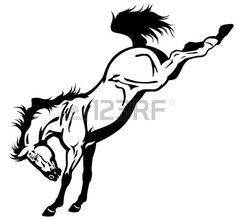 Closeup Portrait Of White Horse With Black Background Stock Photo . Outline Drawings, Horse Drawings, Easy Drawings, Bull Skull Tattoos, Horse Tattoos, Horse Outline, Arte Equina, Pine Tree Art, Horse Silhouette
