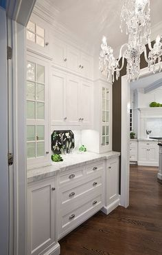 beautiful kitchen with traditional butler's pantry