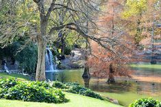 """""""El que no cree en la magia nunca la encontrará"""" (Roald Dahl) Parque del Retiro #Madrid"""