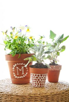 Painted Potted Plants