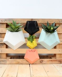 Geometric coolness in the form of a wall planter.. what more could you possibly want in life?!