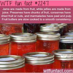 WTF fun fact #2247