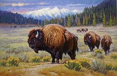Bison American Buffalo Paintings | Buffalo - Painting - Nature Art by Jack Koonce