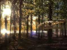 E'terra Samara Treehouse - tree-house villas strewn in the Bruce Peninsula Forest