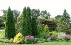 Chicago Botanic Garden - The Dwarf Conifer Garden | Flickr - Photo Sharing!