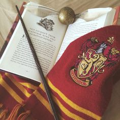 Who are gryffindor? (Just pottermore and wizarding world results)❤️💛 Harry Potter Tumblr, Harry Potter Casas, Magie Harry Potter, Deco Harry Potter, Estilo Harry Potter, Harry Potter School, Theme Harry Potter, Harry Potter Pictures, Harry Potter Aesthetic