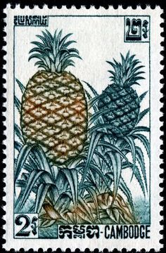 Pineapples, designed and engraved by Claude Haley, and issued by Cambodia in 1962, Scott No. 112.